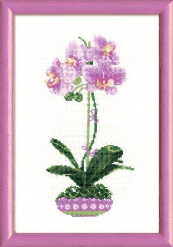 RIOLIS - Kit Completo Per Punto Croce, Motivo: Orchidea Lilla