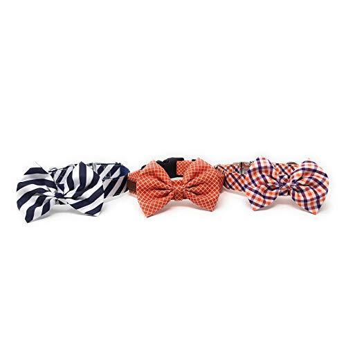 Regal Dog Products Hundehalsband mit Fliege, passend für XS, S, S, M, L, Hund, Katze, Welpen, lustige Geburtstags-Idee – Smoke Dog, Small, Navy/White Seersucker