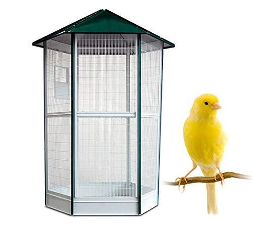 Jaula Voladero para pájaros - Voladero Java de 6 Lados para pequeñas Aves - Ideal para Parques y Jardines