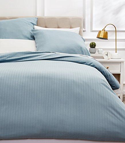 AmazonBasics DS2-SBL-011 Parure de Lit avec Housse de Couette Haut de Gamme avec Deux Taies d'oreiller, 230 x 220 cm, Bleu Spa