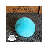 Rex Rabbit Fur Ball 6cm Pompom Car Pompon Rabbit Fur Ball for Keychain Fur Diy Bag Fluffy Bunny Pompom、Lake Blue