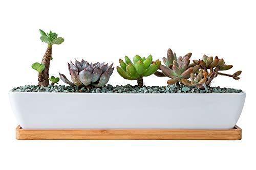 VanEnjoy 27,9 cm rechteckiger weißer Keramik-Übertopf für Sukkulenten und Kaktus-Pflanzen, mit Bambus-Tablett