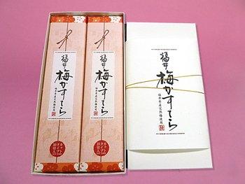 おおい 福井梅カステラ 10切×2箱