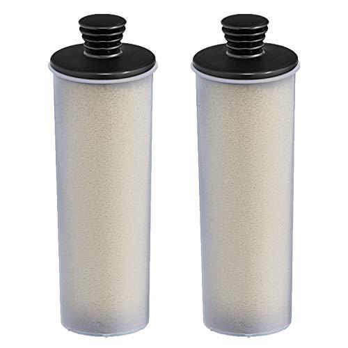 Kärcher SC 3 Entkalkungskartusche für Dampfreiniger, 2er Pack (2 x 1 Kartusche)