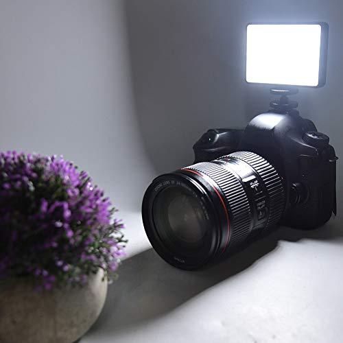 Zwinner Luz de Relleno LED, Cargador USB, multifunción para luz de Relleno, Carga, Accesorio de fotografía, fácil de Cargar