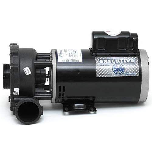 Waterway Plastics 3722021-1D Executive 56 Frame 5 Horsepower Spa Pump, 230-Volts