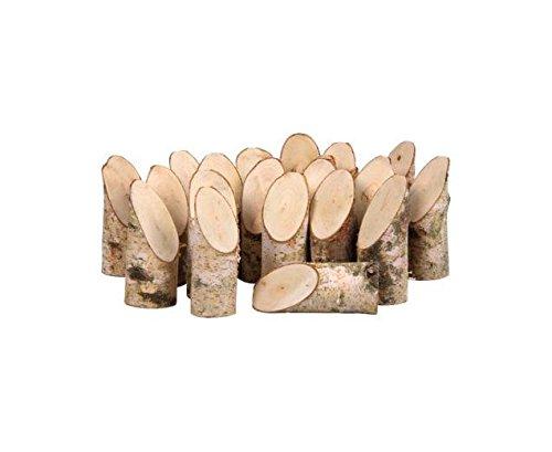 Unbekannt Bastelset - 20 Birkenstämme - Baumstamm-Dekoration selbst basteln
