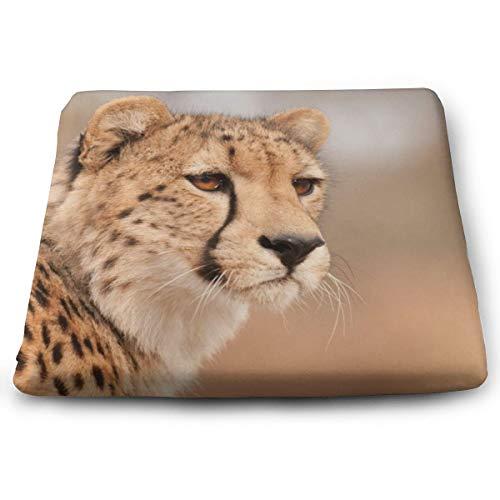 Memory Foam Pad zitkussen. Autostoel Kussens om hoogte te verhogen - bureaustoel Comfort Kussen - Blue Cheetah