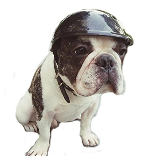 Stock Show Dog Helmet, 1Pc Funny Cool Pet Doggie Motorcycles Bike Helmet Cap Hat for Sun Rain Protection Cats Puppy Cute Helmet Hat Coustume for Small Medium Cats Dogs, Black M