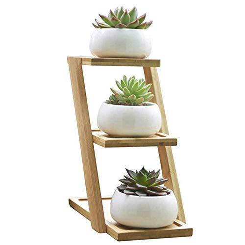DANDANdianzi Pequeño Blanco Redondo de cerámica Planta carnosa Cactus Pot Planta carnosa Pot Maceta para Plantas suculentas con Bandeja de bambú para la decoración de Habitaciones