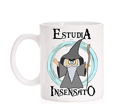 FUNNY CUP Taza Estudia Insensato. Taza opositor, Estudiante, alumno, Profesor. Regalo Divertido Mago señor de los Anillos (Insensato)