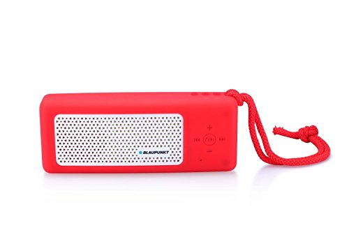 Blaupunkt BTS10RD Tragbar Bluetooth Lautsprecher Sprecher mit Radio, MP3-Player Micro SD (32GB), Akku 4500mAh, Powerbank, LED Taschenlampe
