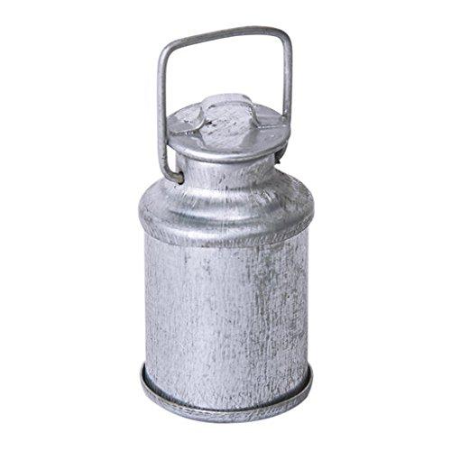 Dcolor Vintage maison de poupee miniature 1/12 cruche de lait avec couvercle bouteille