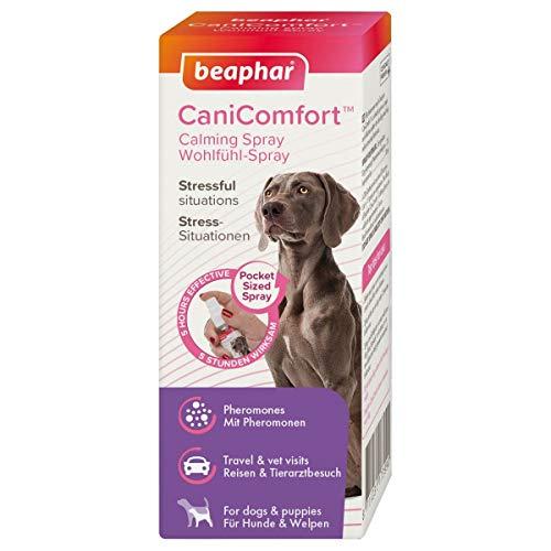 beaphar CaniComfort Wohlfühl-Spray, Beruhigungsmittel für Hunde mit Pheromonen, 30 ml