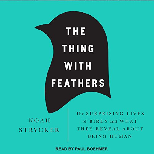The Thing with Feathers audiobook cover art