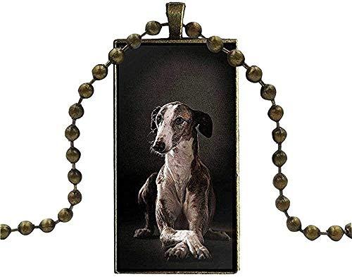 CAISHENY para Mujeres Hombres Collar de Regalo Cadena Larga con Collar Rectangular Joyas Perro Galgo