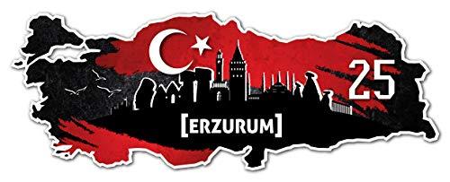 Aufkleber Sticker Türkei 25 Erzurum Motiv Fahne für Auto Motorrad Laptop Fahrrad