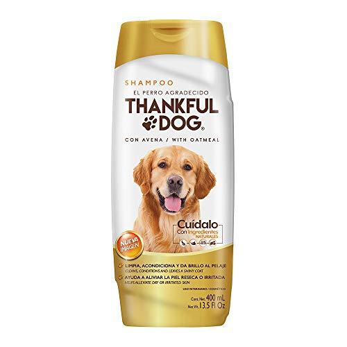 vetriderm jabon dermatologico fabricante Thankful Dog