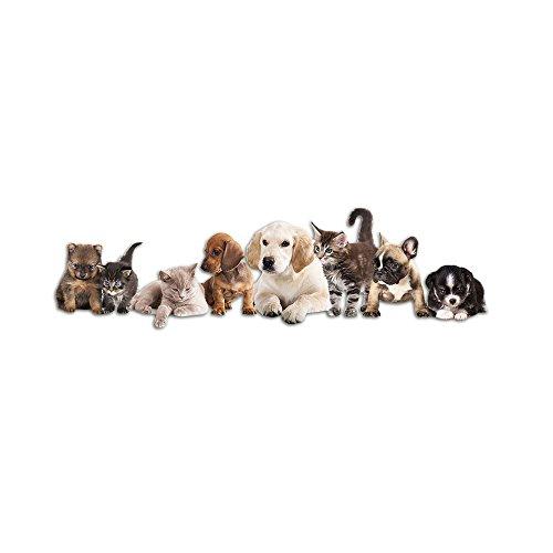 GRAZDesign Wandtattoo Kinderzimmer Welpen Kätzchen, Wanddekoration Wandsticker Tiere Haustiere, Wandaufkleber Wanddeko Katzen Hunde Babys / 108x30cm
