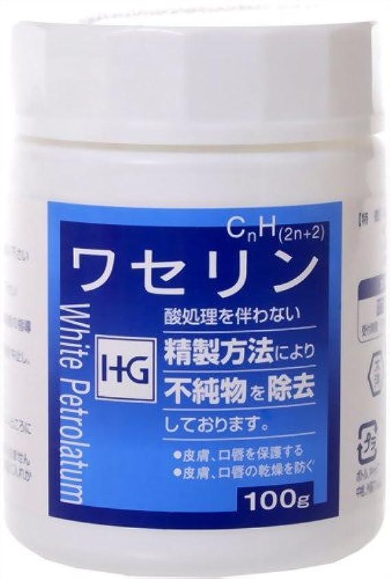 平和的補う前件大洋製薬 ワセリンHG 単品