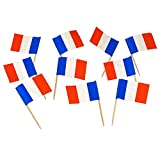 France | French Flag Toothpick...