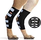 NeoAlly Pair Dog Rear Leg Brace Canine Rear Hock Joint Support with Safety Reflective Straps for Joint Injury and Sprain Protection, Wound Healing and Loss of Stability from Arthritis (Black M)