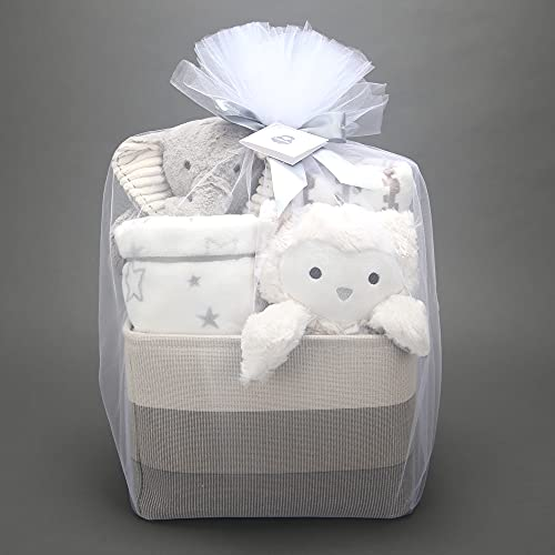 Lambs & Ivy Gray 5-Piece Baby Gift Basket for Baby Shower/Newborn Welcome Home