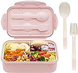 Sinwind Bento Box