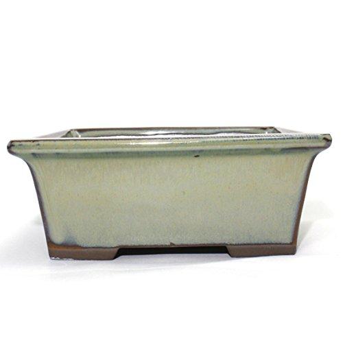 Bonsai Pot Ceramic Rectangle Glazed (6', Oribe-Yu)