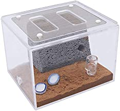 INNOLIFE Ant Farm Ants Castle Science Experiments for Kids (Live Ants Not Included)-Mini 4