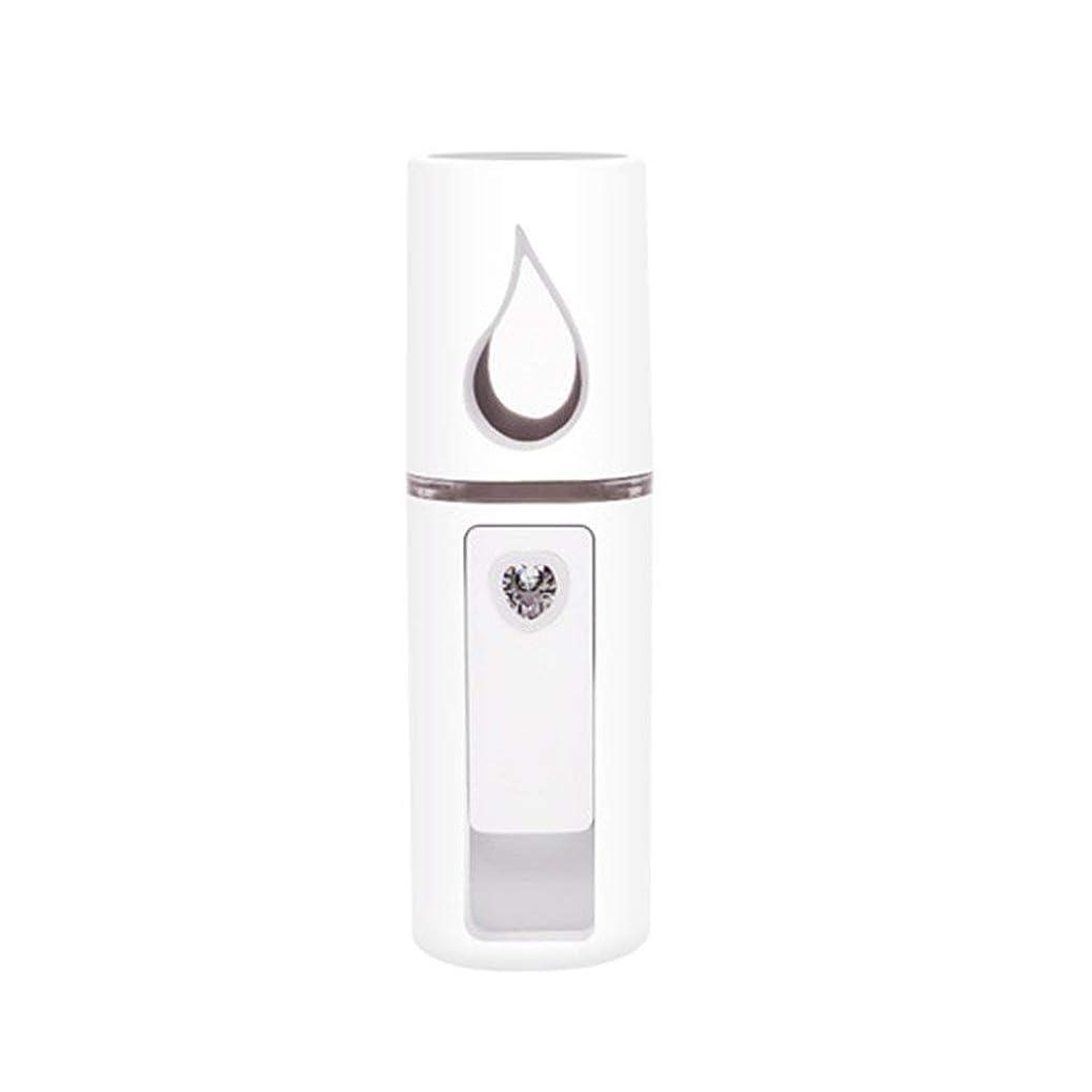 ポータブル小型加湿器USB充電式ハンドヘルド水道メーター充電式ミニ蒸し顔加湿器付き/ミラーなし - ホワイト
