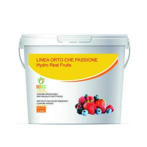 Bioges Hydro Red Fruits da 2,5 kg -Concime NPK idrosolubile Ideale per Le Fragole e Tutti i Tipi di Frutti Rossi