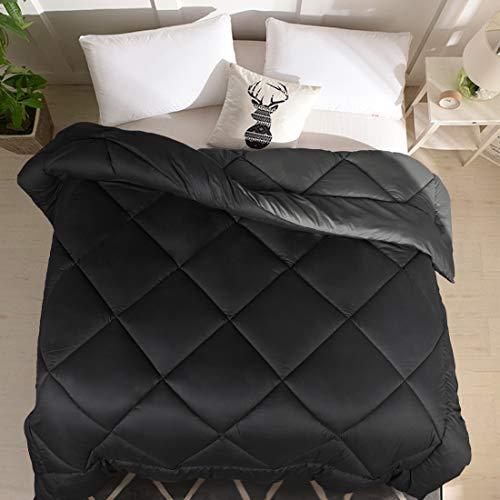 Vonabem All Season 2100 Series Queen Reversible Comforter - Cooling Down Alternative Quilted Duvet Insert with Corner Tabs - Plush Microfiber Fill - Machine Washable - Hypoallergenic - Black/Dark Grey