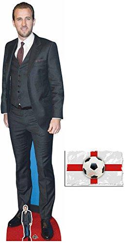 BundleZ-4-FanZ by Starstills Harry Kane Fußballer Lebensgrosse und klein Pappaufsteller/Stehplatzinhaber/Aufsteller mit 25cm x 20cm foto
