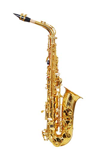 Generic Alto saxophone Eb AS100G golden professional with hard case