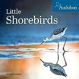 Audubon Little Shorebirds Mini Wall Calendar 2022