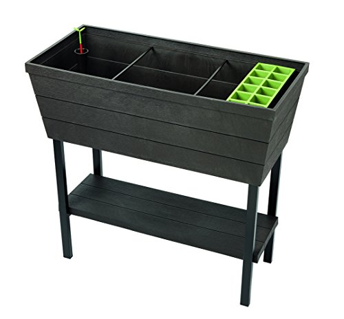 Raised Garden Bed with Self Watering Planter Box
