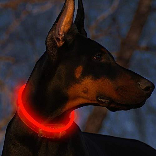 Fttouuy LED Leuchthalsband Hunde Halsband USB wiederaufladbar - Längenverstellbarer Haustier Sicherheit Kragen für Hunde und Katzen - 3 Modus (Rot)