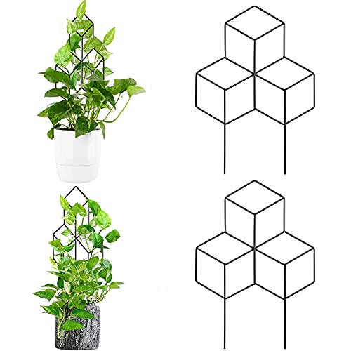 Heroicn 2pcs Garden Trellis Black Coated Plant Trellis for Indoor Outdoor Climbing Plants in Pots, Flower Vegetables Rose Vine Pea Ivy Cucumbers (Color : 2PCS Diamond)