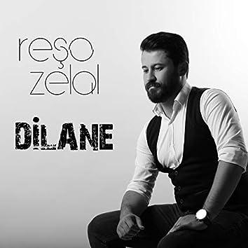 Dilane