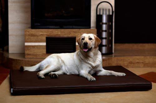 tierlando Carlos Ortho-Medic Orthopädische Hundematte Kunstleder Visko Hundebett Matratze Größe: L - 100x80cm - CA4 | Farbe: 01 braun