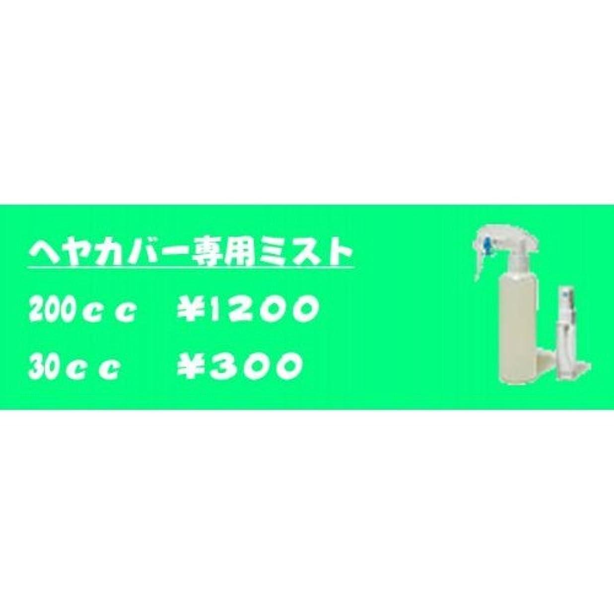 忠実暴露ブロー男女兼用?増毛ヘアカバー専用ミスト(200cc)