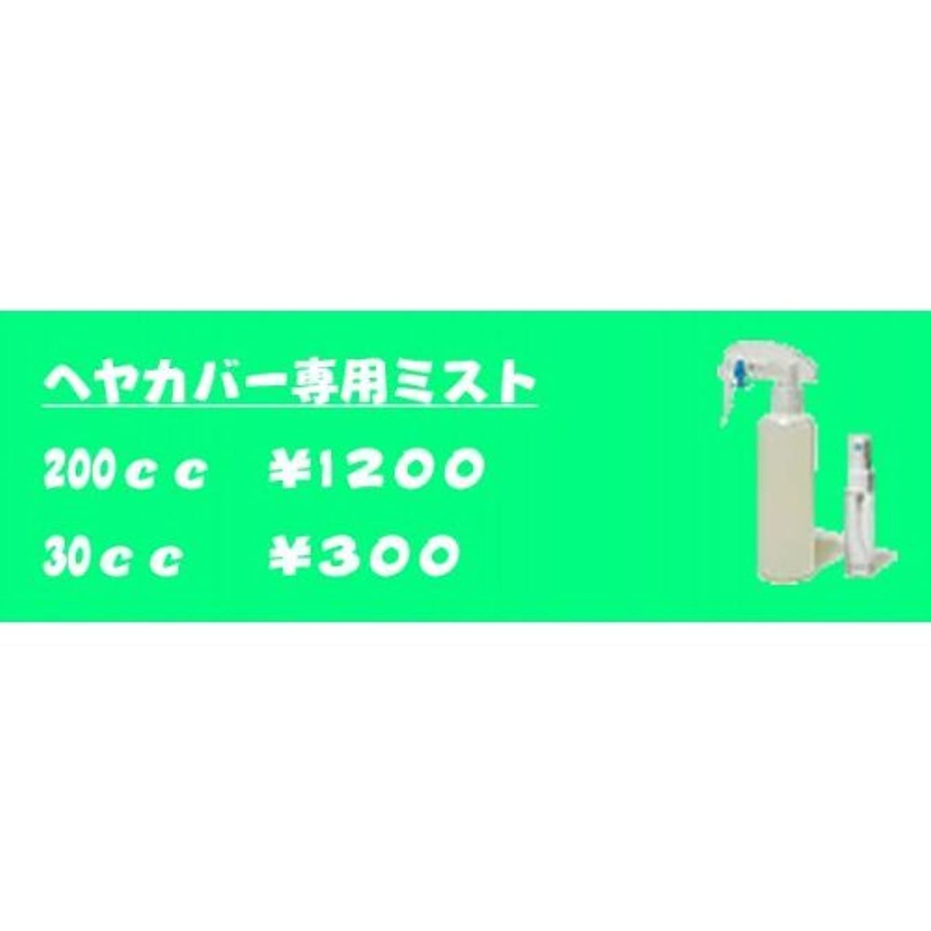 建物製油所スナップ男女兼用?増毛ヘアカバー専用ミスト(200cc)