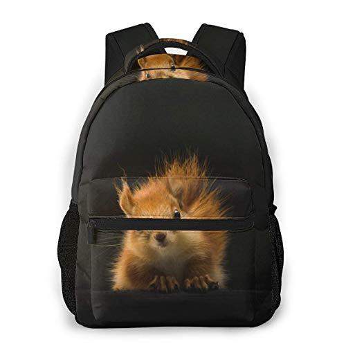 DJNGN Bookbag Cat Bee Meeting Men and Women Casual Style Canvas Backpack School Bag,