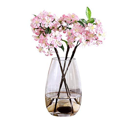 ZXZMONG Vasen ,Transparente Glasvase Grüner Rettich Hydroponik Aquarium Reichen Bambus Wohnzimmertisch Heimtextilien Trockene Vase 19 * 7 * 7,5 cm