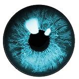 (J) ブルーアイズカボーションガラスパーツ (サイズ)25mm 1個 ドールアイ 人形の目 ぬいぐるみ フィギア 眼球 ドーム型 丸型 目玉 アクセサリーパーツ ハンドメイド DIY