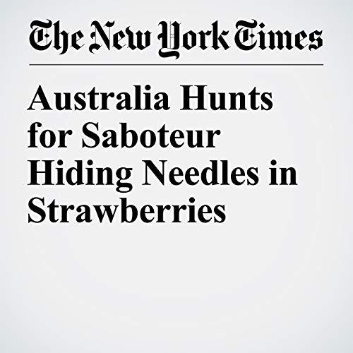 Australia Hunts for Saboteur Hiding Needles in Strawberries copertina