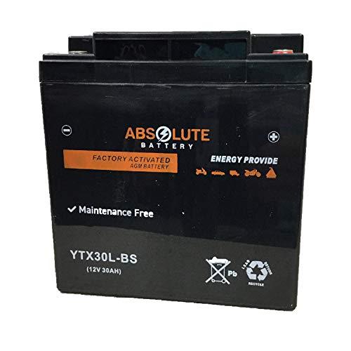 YIX30L-BS YIX30L Battery for YUASA YUAM6230X ETX30L CIX30L YB30L-B UIX30L