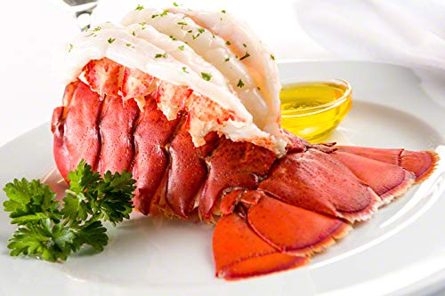Lobster Overseas parallel import regular item Free shipping on posting reviews Gram M10T2 TWO 10-12 LOBSTER MAINE TAILS OZ