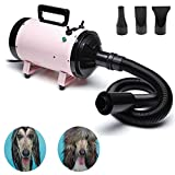 Best Dog Dryers - dicn Dog Hair Dryer Professional 2800W Low Noise Review